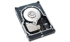 "146.8GB SEAGATE Cheetah 15K.5 (3.5"", 146.8GB, 16MB, Serial Attached SCSI)"