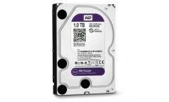 Western Digital Purple, 3.5'', 1TB, SATA/600, 64MB cache