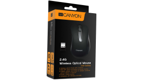 CANYON Mouse CNE-CMSW2 (Wireless, Optical 800 dpi, 3 btn, USB), Black