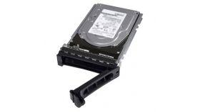 8TB 7.2K RPM NLSAS 512e 3.5in Hot-plug Hard Drive, PI, CusKit