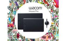 Wacom Intuos Pro L + Corel Painter 2018
