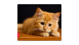 SPEEDLINK SILK Mousepad, Baby Cat