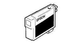 Epson 110ml Light Cyan for Stylus Pro 4880/4800